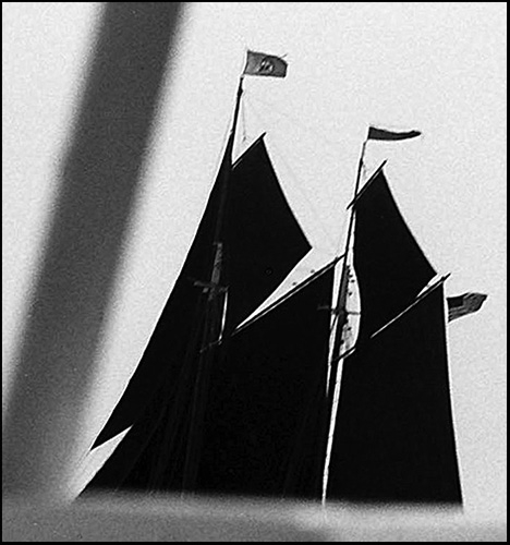sails in silhouette